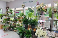 [PRICE REDUCED] $149,000 FLOWER SHOP